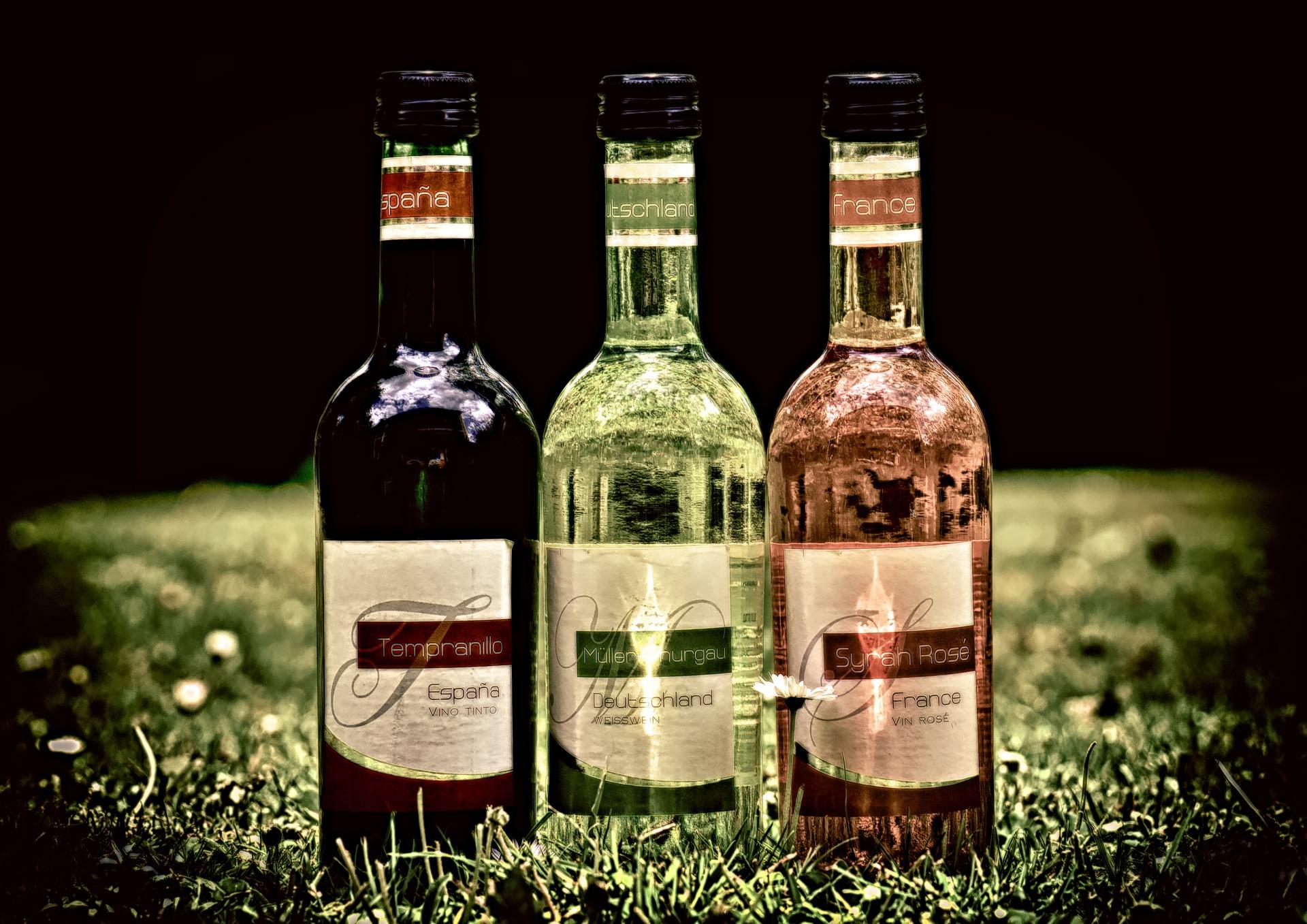 Un ministre français provoque un scandale en affirmant que le vin est différent des autres alcools